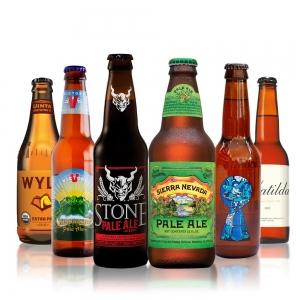 tipos de cerveza - cerveza ale -cerveza tipo ale - ale cerveza - cervezas ale - que es ale - cerveza ale -Pale ale - IPA