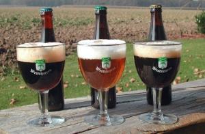 tipos de cerveza - cerveza belga - cervezas belgas - mejores cervezas belgas - cerveza belga marcas - Westvleteren