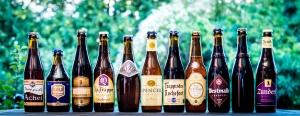 tipos de cerveza - cerveza belga - cervezas belgas - mejores cervezas belgas - cerveza belga marcas - cerveza trapista
